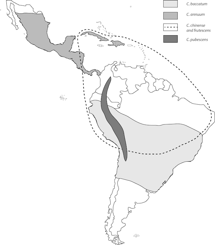 Range of chili pepper species at the time of European arrival in the Americas
